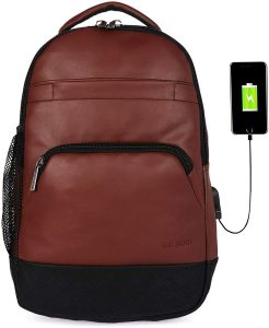 Fur Jaden 15.6 Inch Laptop Backpack Bag with USB Charging Port